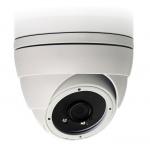 Camera IP Dome hồng ngoại 2.0 Megapixel AVTECH AVM2220P